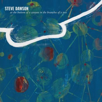 """Places of Grace: A Review of Steve Dawson's """"At the Bottom of a Canyon In the Branches of a Tree"""""""